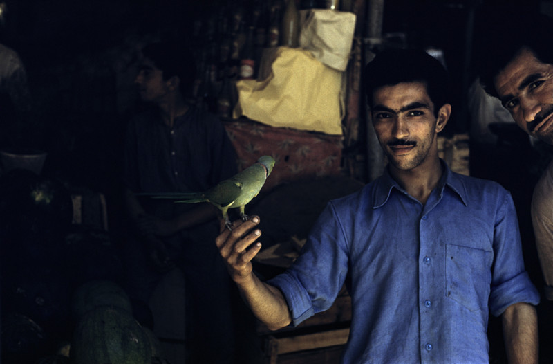 Man with a bird, Shiraz, 1956. © The Inge Morath Foundation/Magnum Photos